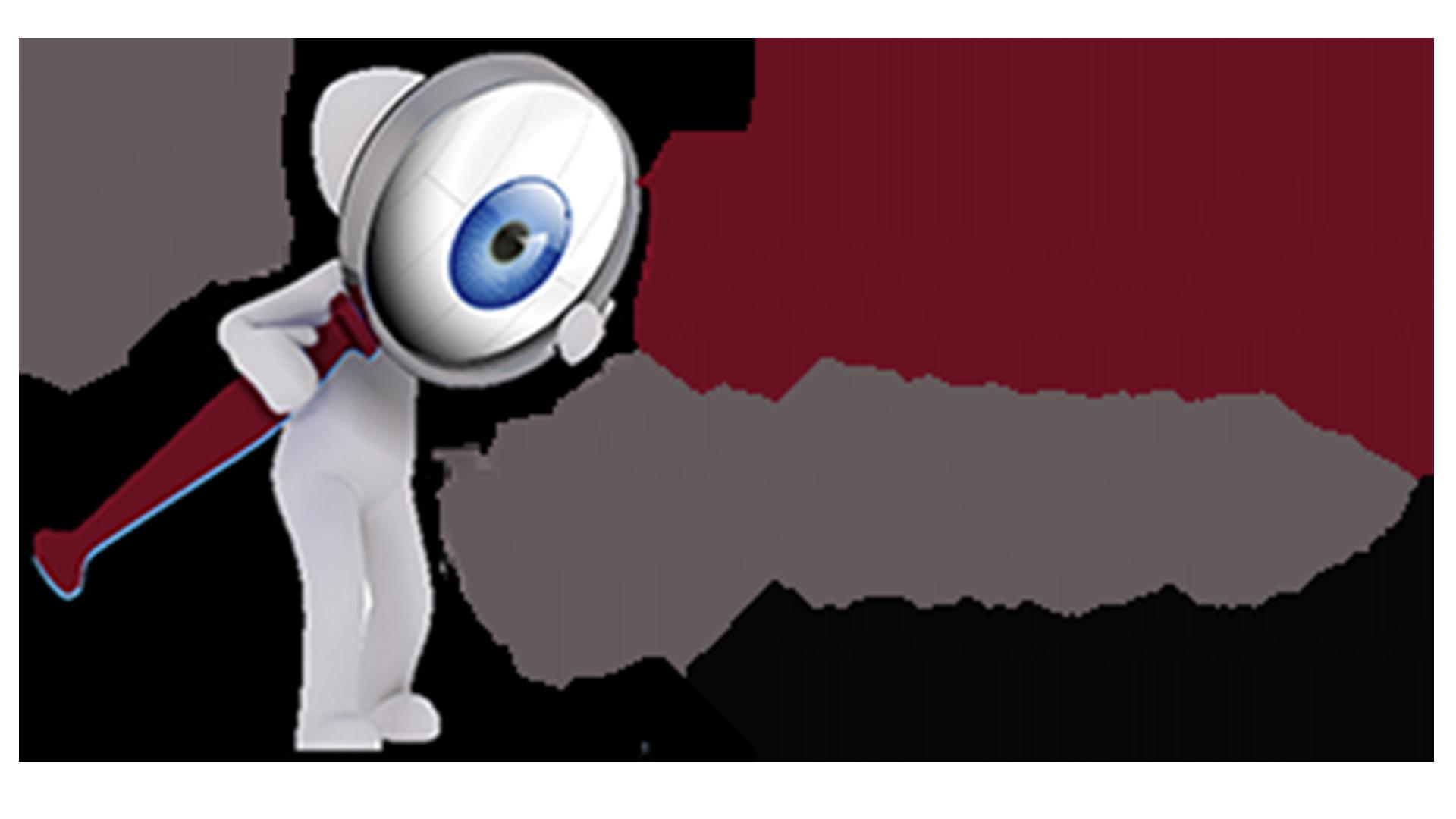 El Observador de Querétaro………