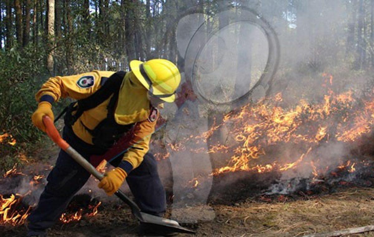 Aplican Plan DN-III-E por incendios en Querétaro, Durango y Tabasco