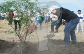 Arranca Toño Mejía reforestación y limpia en Tequisquiapan