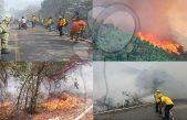 Amenaza bosques de Xilitla y Aquismón incendio de la Sierra Gorda de Querétaro