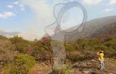 Controlado un 60% incendio forestal en la Sierra Gorda