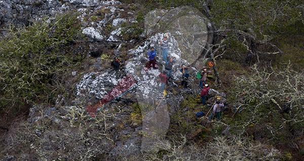Incendio Forestal la Sierra Gorda de Querétaro (galería)