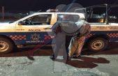 Detienen a presunta pareja de ladrones en Infonavit Pedregoso