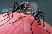 Aumentan muertes por dengue, no hay recursos para compra de insumos