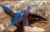 El fósil de este dinosaurio conserva su contenido estomacal: un lagarto