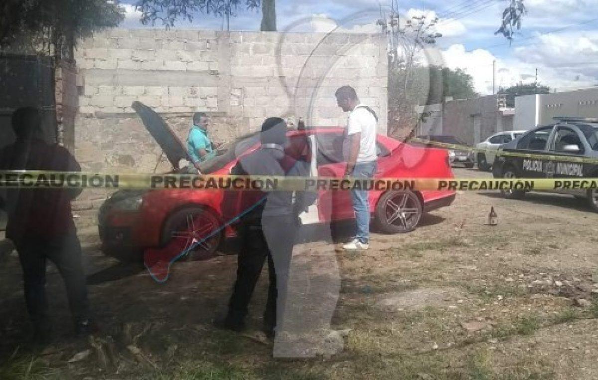 Catean predio y localizan vehículos robados en SJR