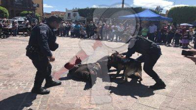 Fundamental trabajo conjunto entre ciudadanos y policias: Ángel Rangel