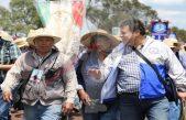Saldo blanco en paso de Peregrinos por el estado de Querétaro