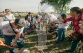 Más de 11 mil árboles en campaña de Reforestación para SJR