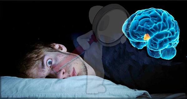 Que es la Narcolepsia?