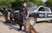 Más 150 elementos resguardarán Fiestas Patrias en TX