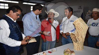 Entregan autoridades equipo de trabajo a artesanos escobedenses