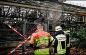 Incendio en zoológico mata a 30 animales en Año Nuevo
