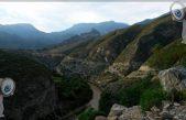 PAN y PVE van por la protección de la vegetación de Querétaro
