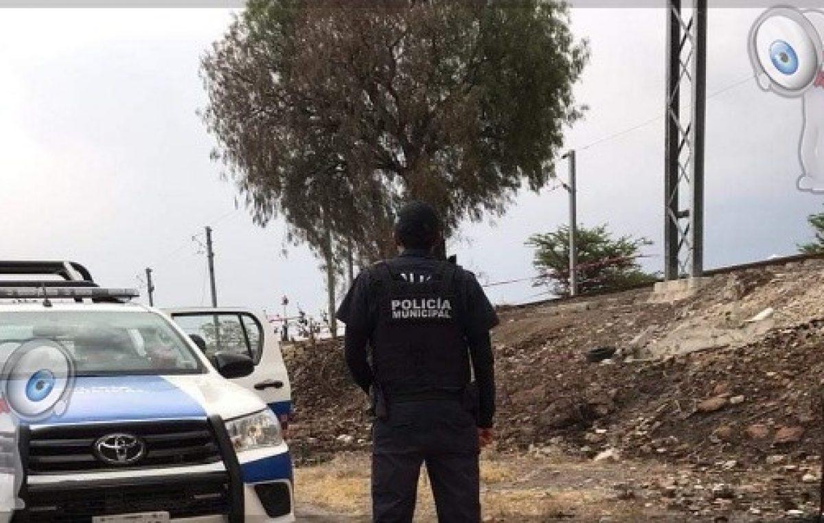 Masculino se suicida tras colgarse de un árbol en El Pedregoso