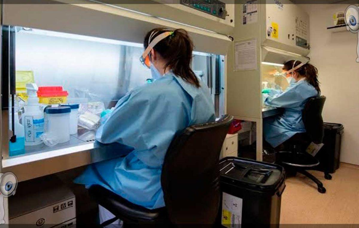 Querétaro con 74 casos confirmados de enfermedad COVID-19