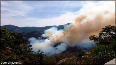 Consume incendio 100 hectáreas en Pinal de Amoles