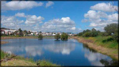 Anuncia Memo Vega Parque Ecológico para Zona Oriente