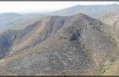 Controlan incendio forestal en Santa Isabel El Coto