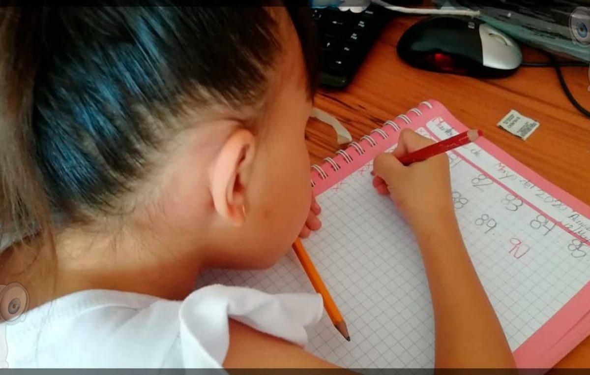 Resultados de asignación de lugares en educación básica hasta Julio: USEBEQ