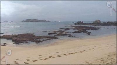 Emiten alerta de tsunami para costas mexicanas tras fuerte sismo