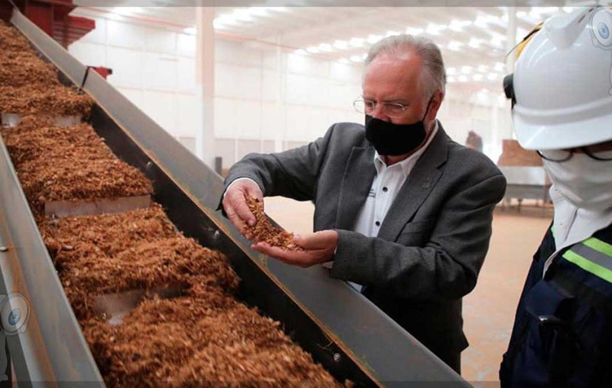 Productos derivados de coco se producirán en Querétaro, generarán 390 empleos
