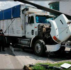 Brutal choque deja daños materiales y un lesionado en Paseo Central