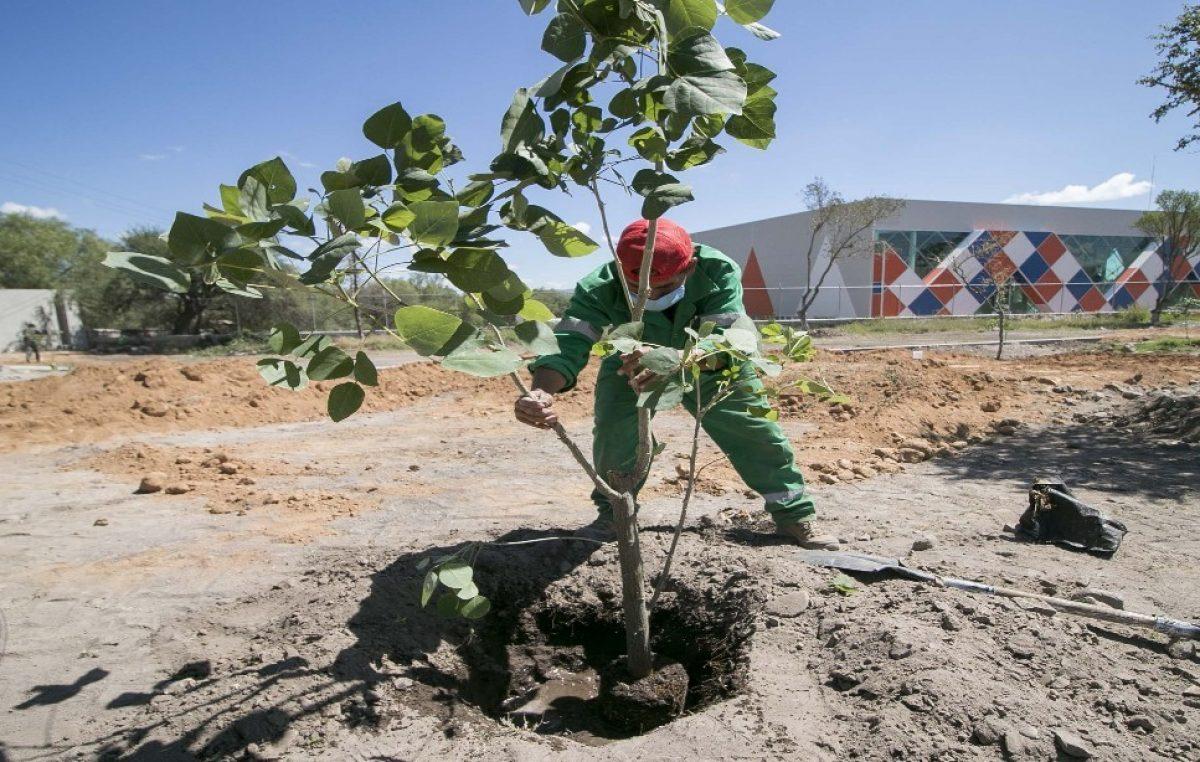 Busca gobierno de Memo Vega consolidar Centro Municipal de Cultura Ambiental