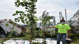 Entregan árboles a habitantes del municipio de Pedro Escobedo