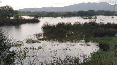 Inician en Tequisquiapan desfogue de agua de Presa Centenario