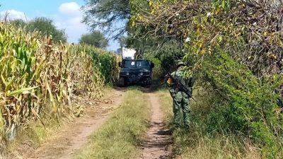 Localizan Toma Clandestina en Senegal de las Palomas
